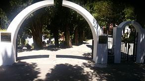 Pregled saučešća i sahrana na gradskom groblju
